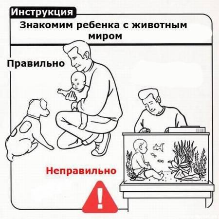 Из инструкций...