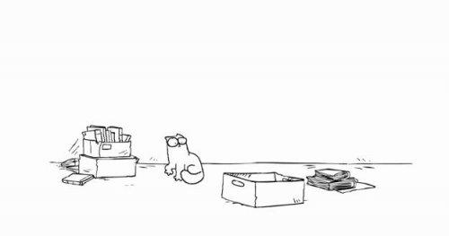 Кот Саймона и коробка