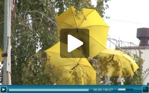 Зонты на деревьях