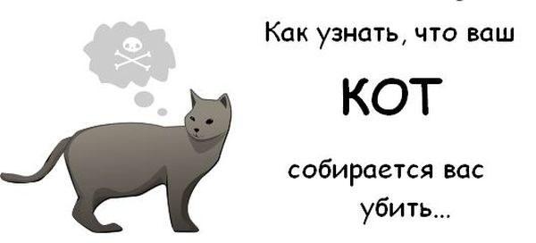 А что, если кот пытается вас убить?