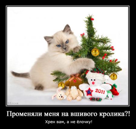 Демотиваторы новогодние