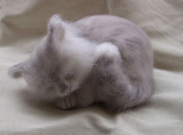 Войлочные кошки